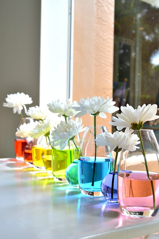 Create a Rainbow Centerpiece Using Food Coloring