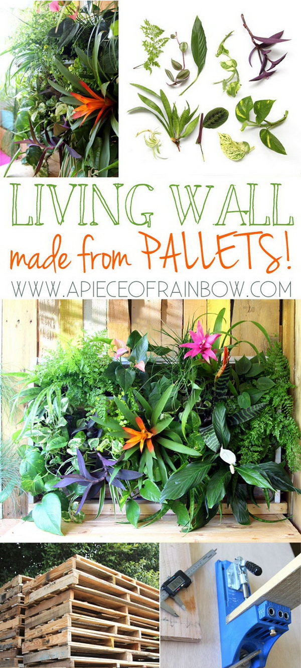 DIY Tropical Pallet Living Wall