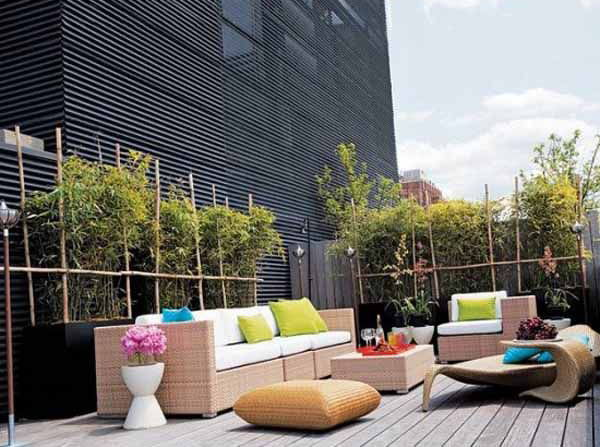Modern Urban Rooftoop Garden