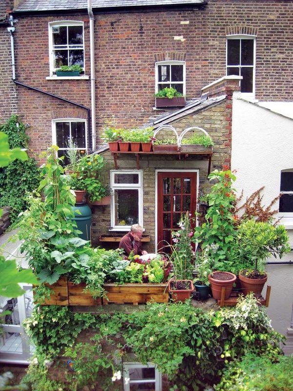 Cute Rooftop Garden