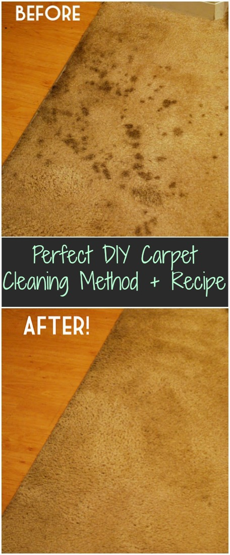 Homemade Carpet Cleaning Recipe