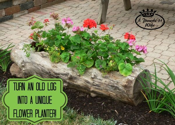 DIY Hollow Log Planter for Flowers. Get the tutorial