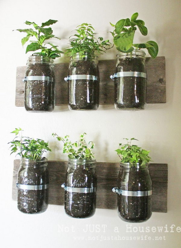 DIY Mason Jar Wall Planter. Check out the tutorial
