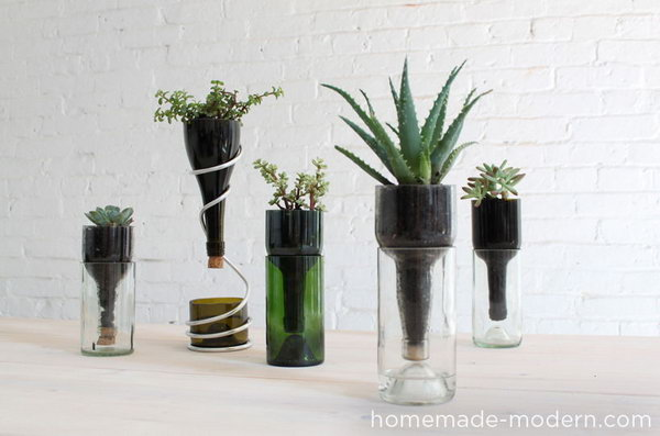 DIY Wine Bottle Desktop Planters. See the tutorial