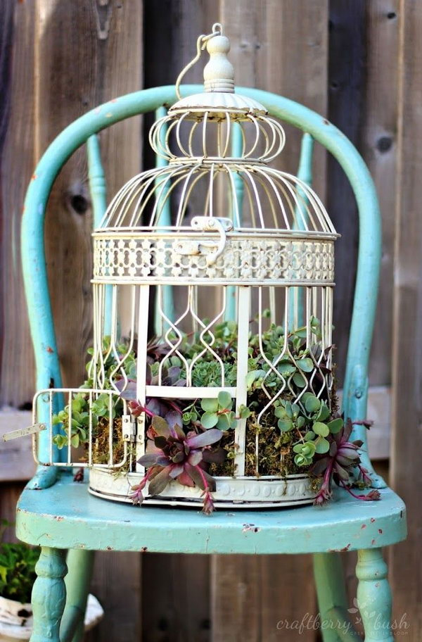 Bird Cage Planter. See more