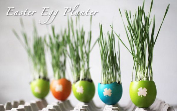 DIY Easter Egg Planters. See more