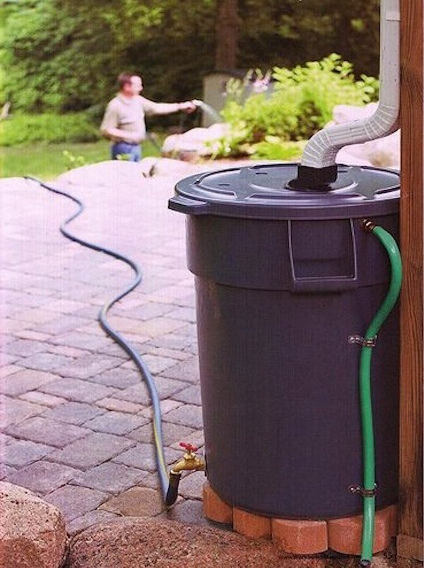 Make Your Own Rain Barrel to Water the Garden with out of a Heavy Duty Trash Can.