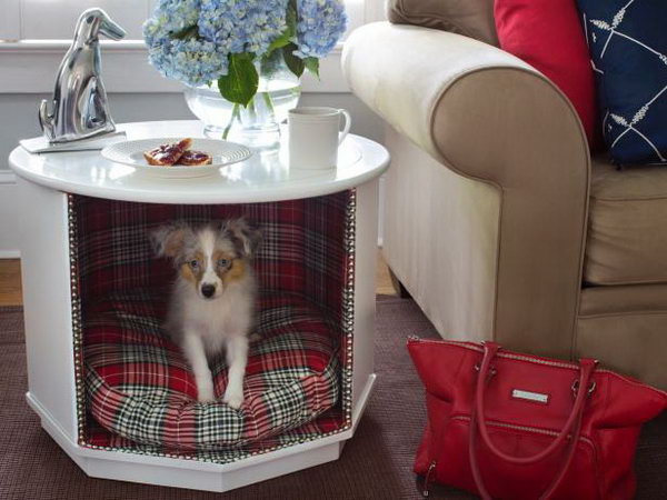 Make a Combination Pet Bed and End Table.