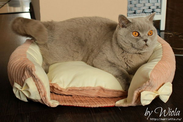 How To Sew A Bed For A Cat.