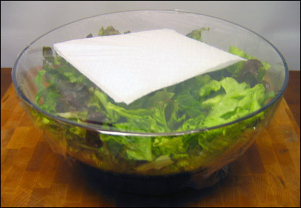 Avoid Limp Lettuce with Paper Towel.