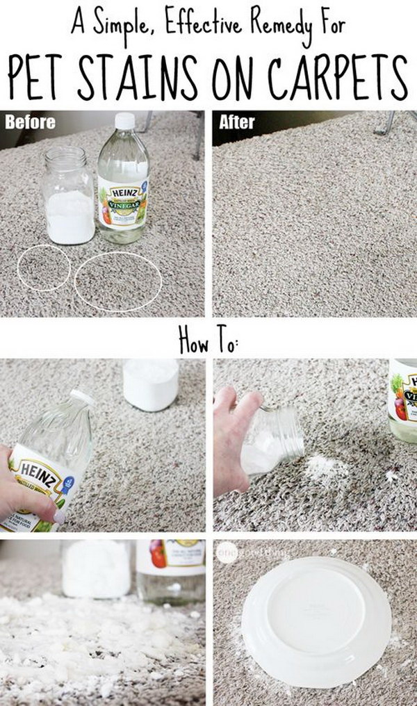 Homemade carpet cleaning solutions and tips noted list - Remove carpet stains ...