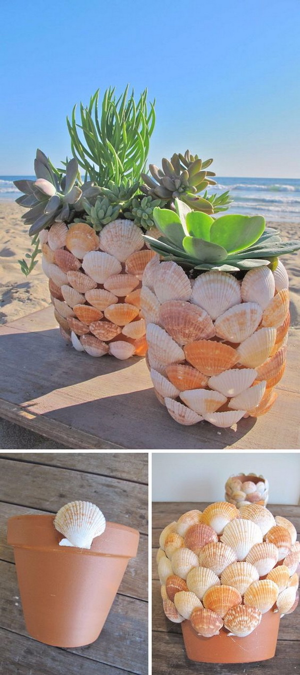 DIY Seashell Planter