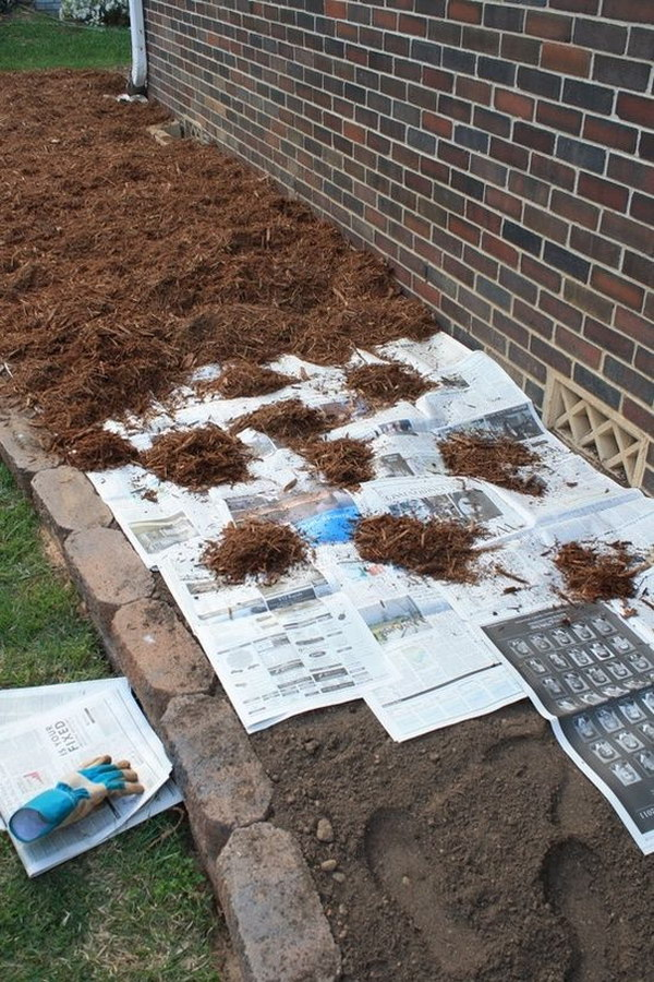 The newspaper will prevent the seeds from germinating until it decompose after about 18 months.