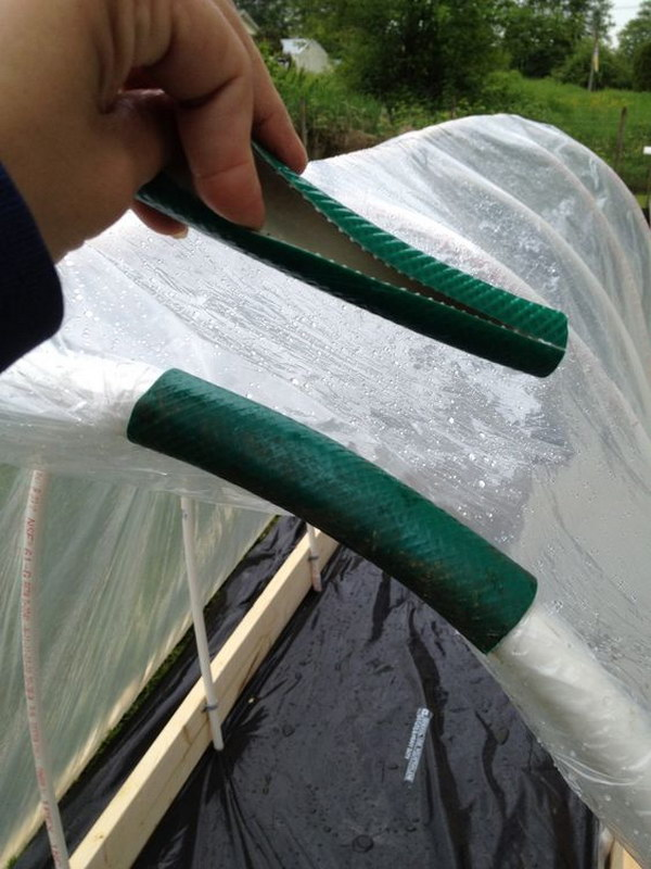 Use An Old Hose To Keep Plastic On A Raised Bed Garden.