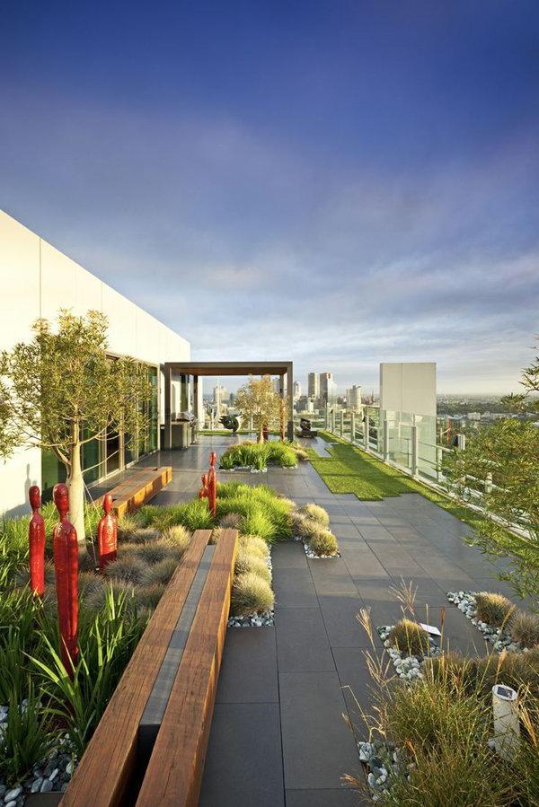 Future Rooftoop Garden