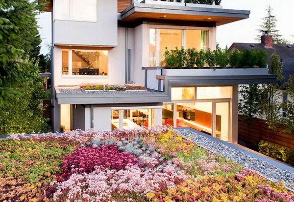 Rooftop Garden Incorporated With Living Room