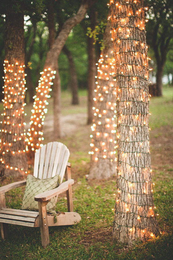 Amazing Tree Lights.