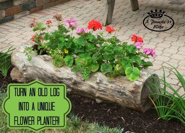 DIY Hollow Log Planter for Flowers. Get the tutorial