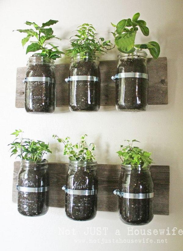 DIY Mason Jar Wall Planter. Check out the tutorial