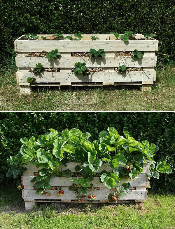 Repurpose Pallets into Garden Planters. Check out the tutorial