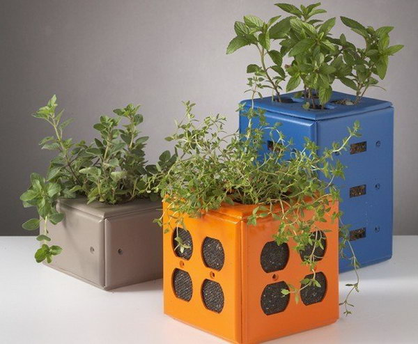 Desktop Planters Made from  Old Switch Plate Covers. See the directions