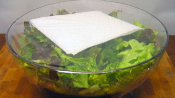 Use a paper towel to keep your salad lettuce fresh all week long.