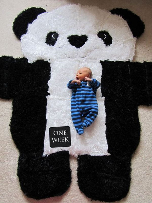 DIY Over sized Panda Rug. Love this idea to show the growth and transformation of baby during the first year. Via