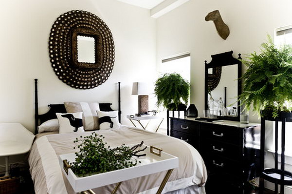Antiqued Peacock Mirror with the Black and White Layout.