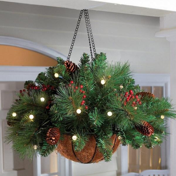 Evergreen Hanging Basket
