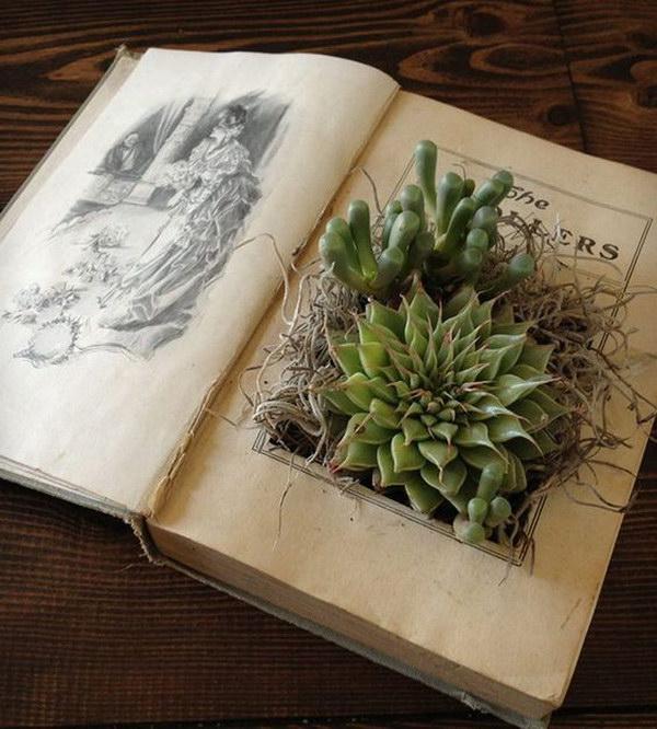 DIY Vintage Book Planter