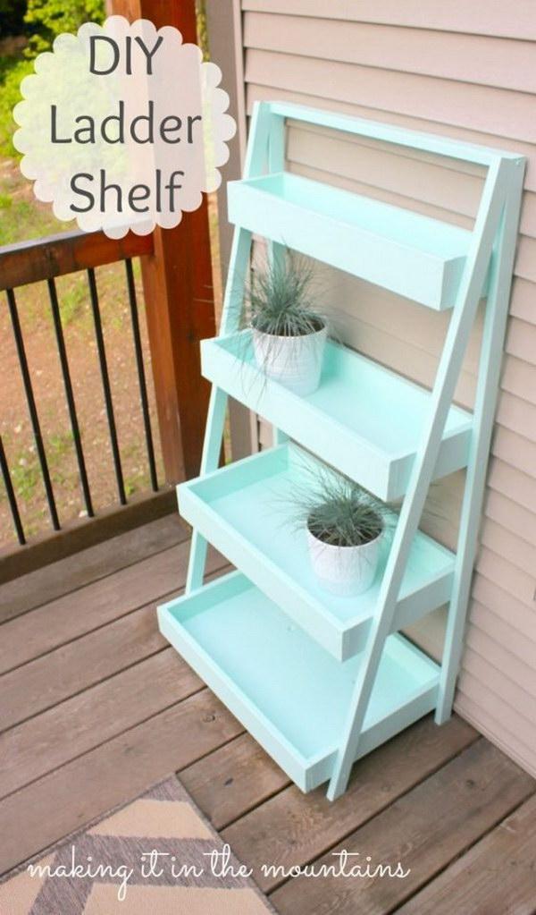DIY Ladder Shelf.