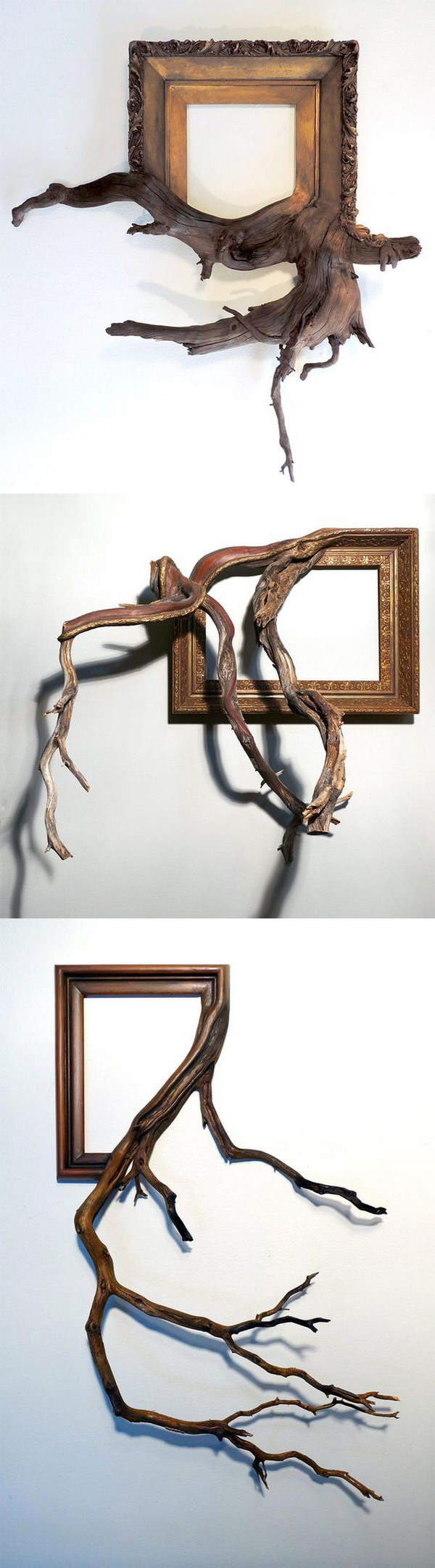 Ornate Vintage Picture Frames with Tree Branches.