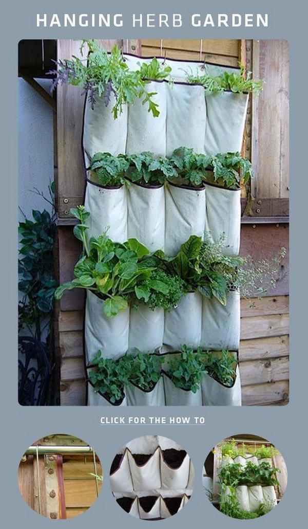 DIY Shoe Rack Hanging Herb Garden
