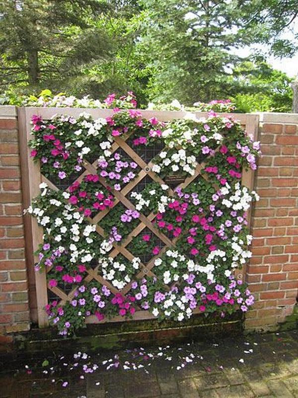 Lattice Fence Vertical Garden